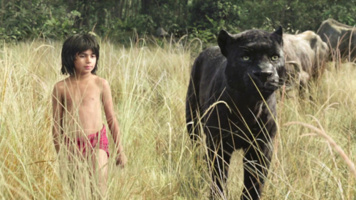 The place for the Latest Film Reviews 2016 - Bagheera and Mowgli